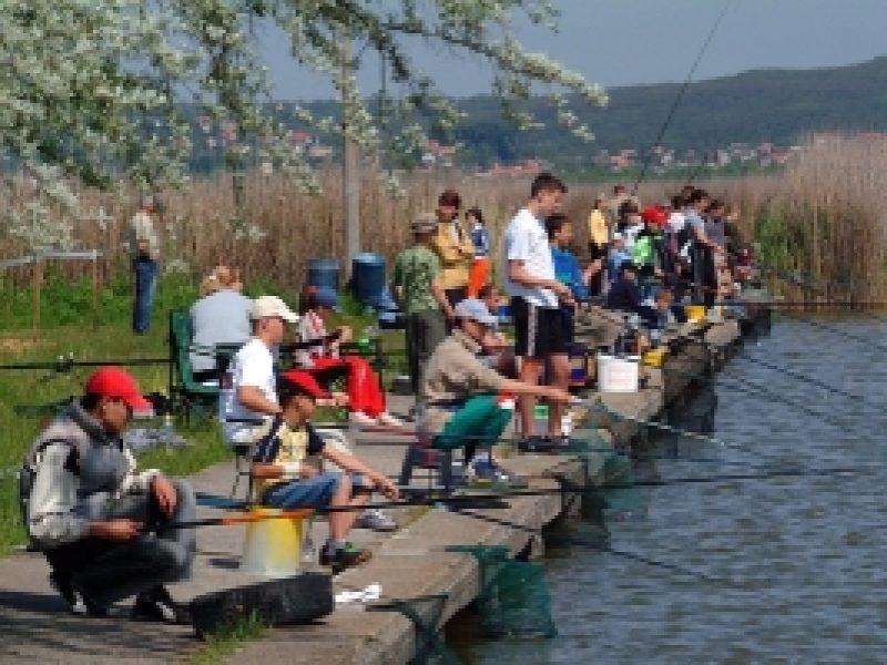Szabad strand Velencei-tó