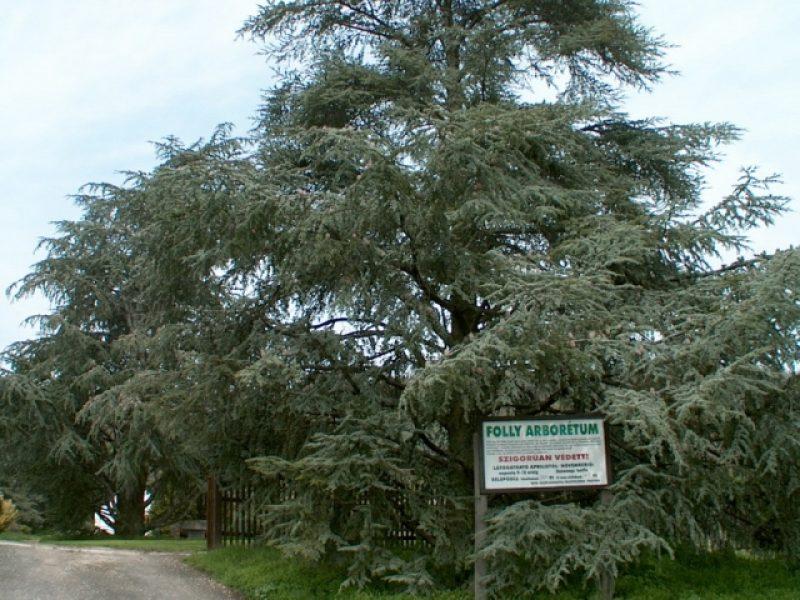 Folly Arborétum Badacsony