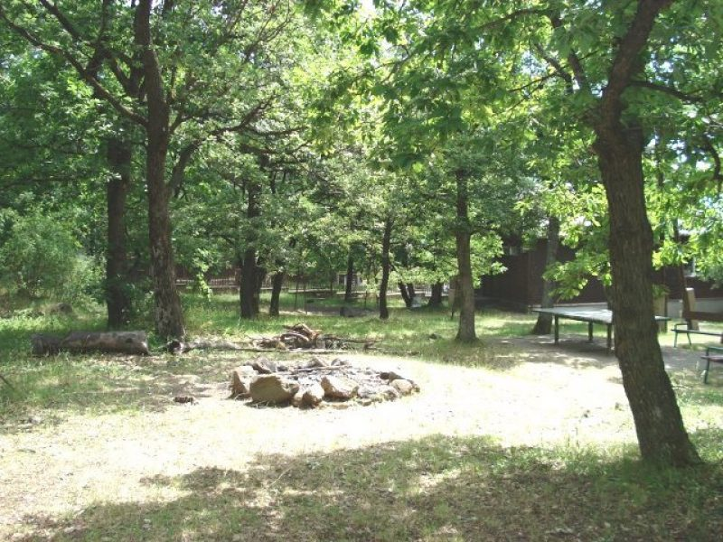 Sástói erdei iskola és nyári tábor