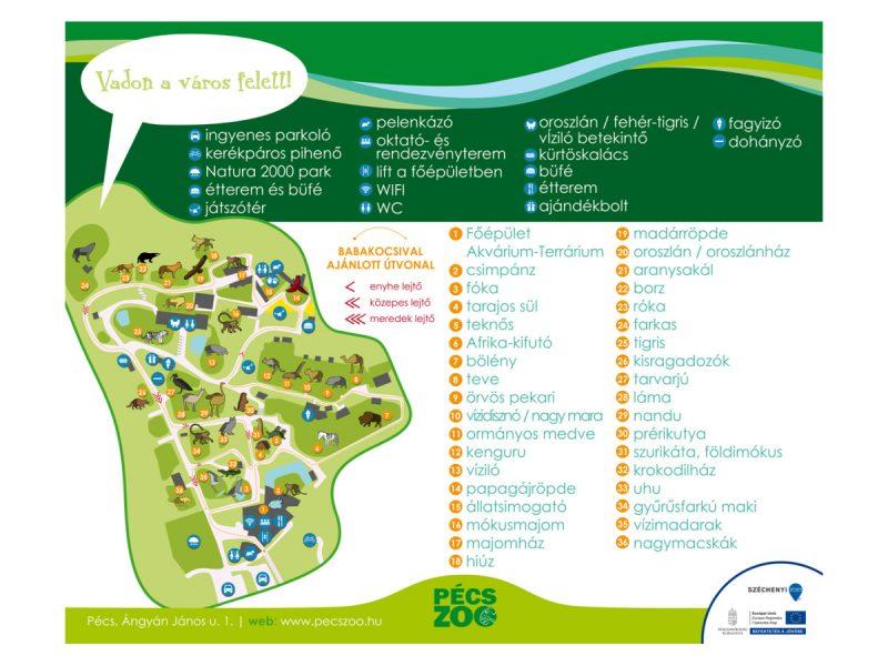Pécsi Állatkert felfedezése